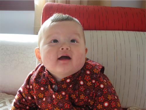 七个月宝宝坐着后背